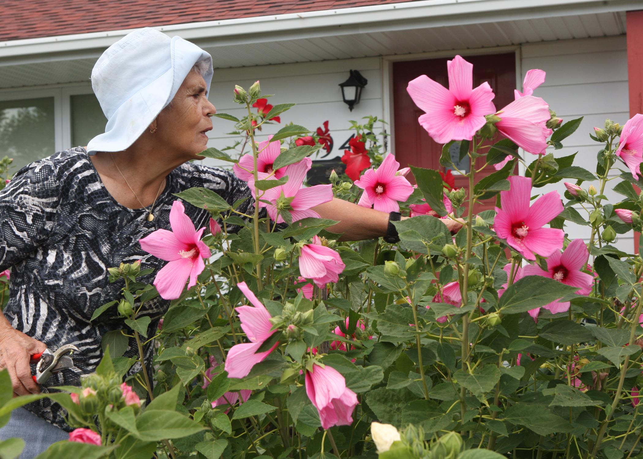 Visites de potager potagers d 39 antan for 860 plante st hyacinthe