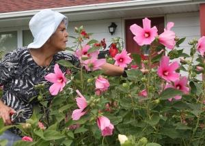 Emma De Matos avec ses hibiscus