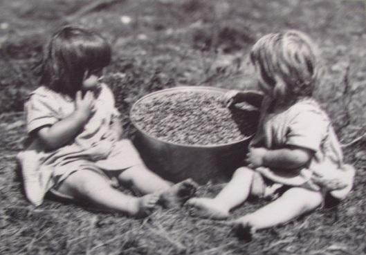 Enfants aux bleuets (source: fonds de l'Action catholique / Bibliothèque et archives nationales du Québec)