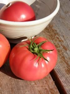 Tomate Savignac (image: Slow Food Canada)