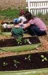 Un jardin surélevé pour mes enfants en 2014