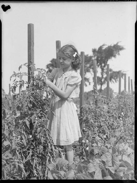 Thérèse Raymond en 1941 au Jardin Botanique de Montréal (image: bibliothèque et archives nationales du Québec)